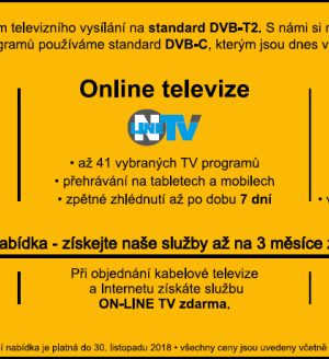 Online televize